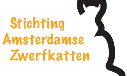 Steun Stichting Amsterdamse Zwerfkatten