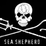 Steun Sea Shepherd