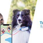 Tractive: #1 GPS tracker systeem voor kat en hond